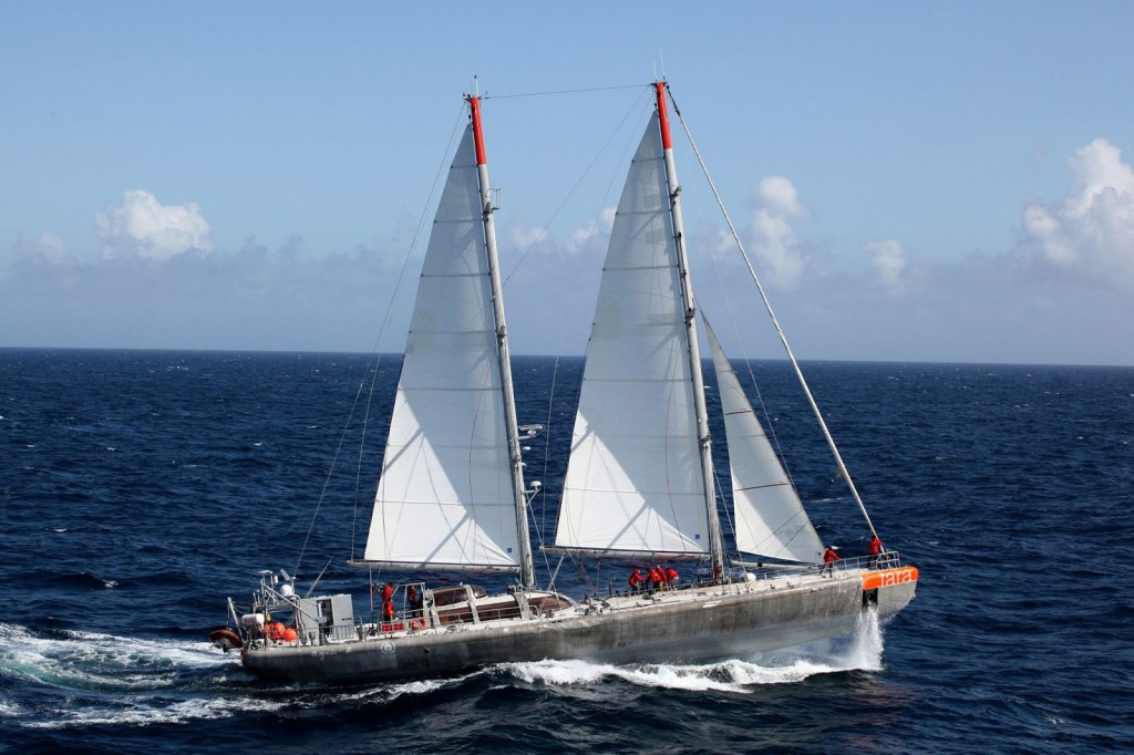 tara-expedition-yacht