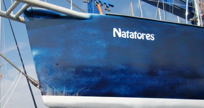 natatores-details-11