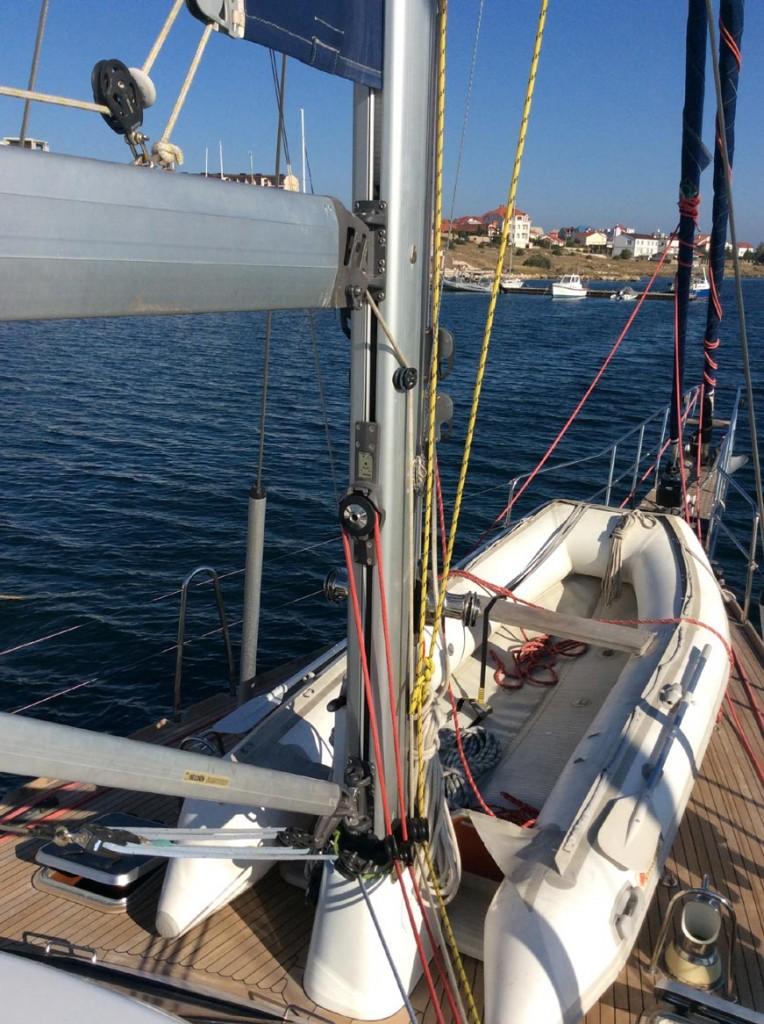 natatores-mast-01