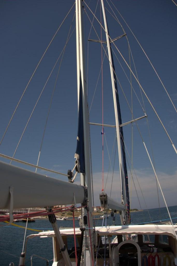 natatores-mast-12