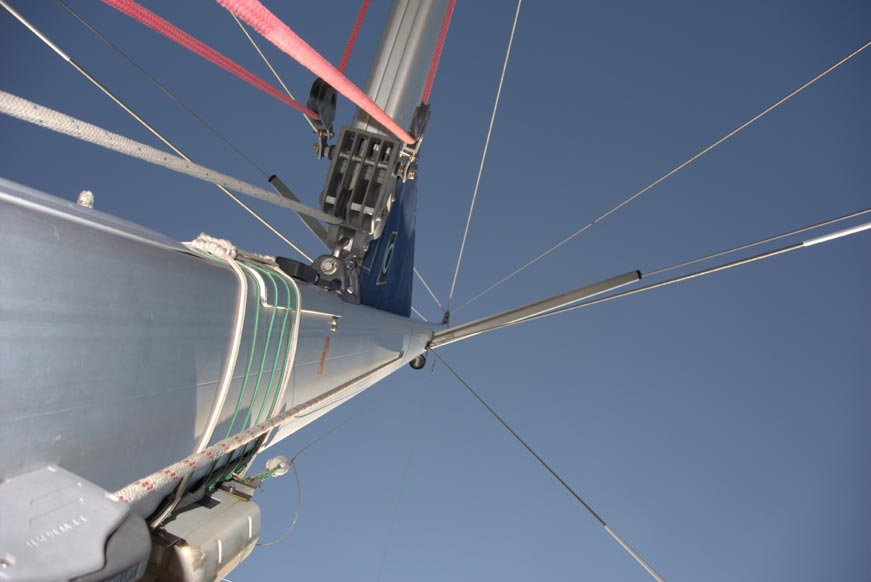 natatores-mast-15