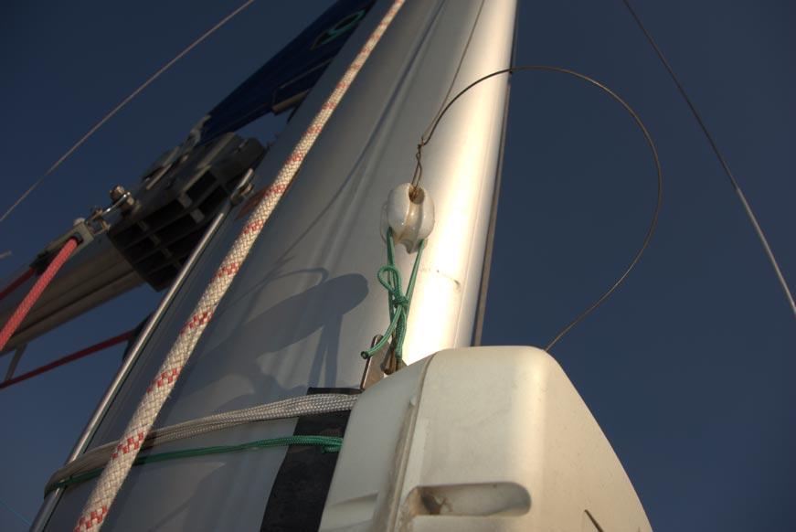 natatores-mast-18
